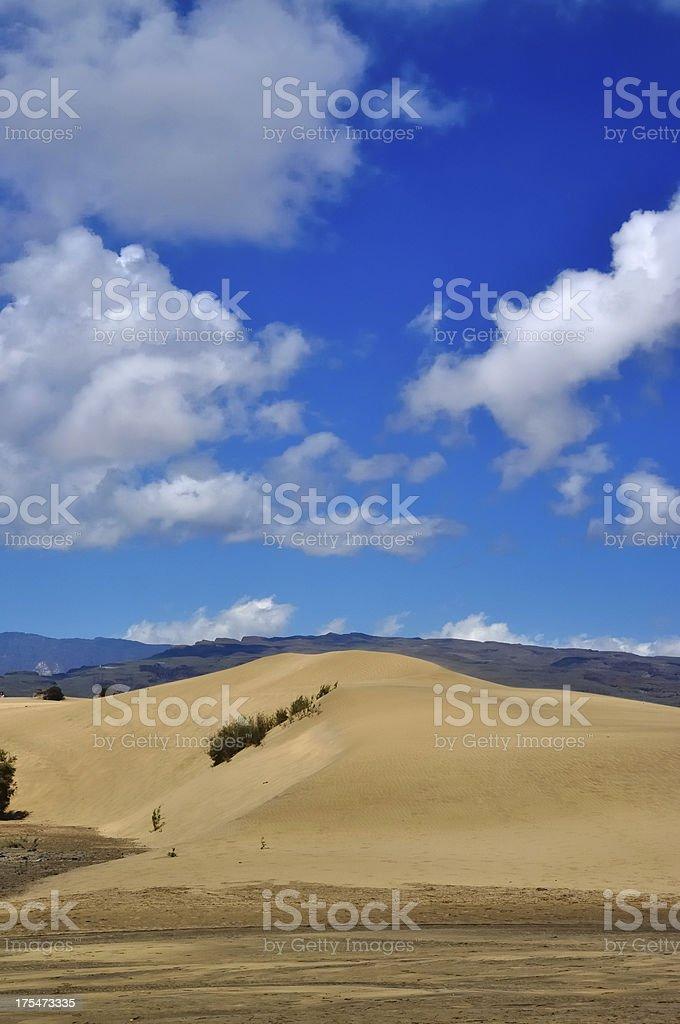 Dunes at Maspalomas, Gran Canaria royalty-free stock photo