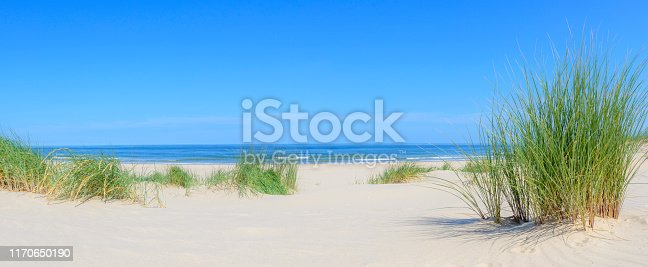 Dunes at the beach with Beachgrass during a beautiful summer day at the North Sea coast in Holland.