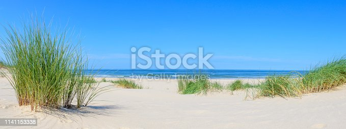 Dunes at the beach with Beachgrass during a beautiful summer day at the North Sea beach in Holland.