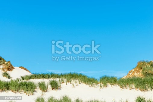 Dunes at the beach with Beachgrass during a beautiful summer day at the North Sea beach in Holland. The dunes form a natural protection against the sea for the low lands behind the sand hills.