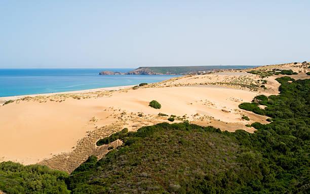 Dunes beach in Sardinia stock photo