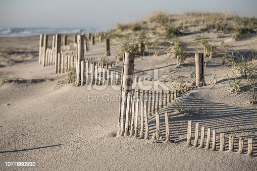 Morning light shines on the dunes at the Ocean City, NJ beach. The image focuses on the partially buried fence zig zagging into the distance.