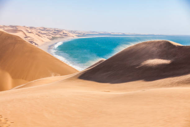 Dunes in Namib desert The Namib desert along side the atlantic ocean, southern Africa, Namibia namib desert stock pictures, royalty-free photos & images