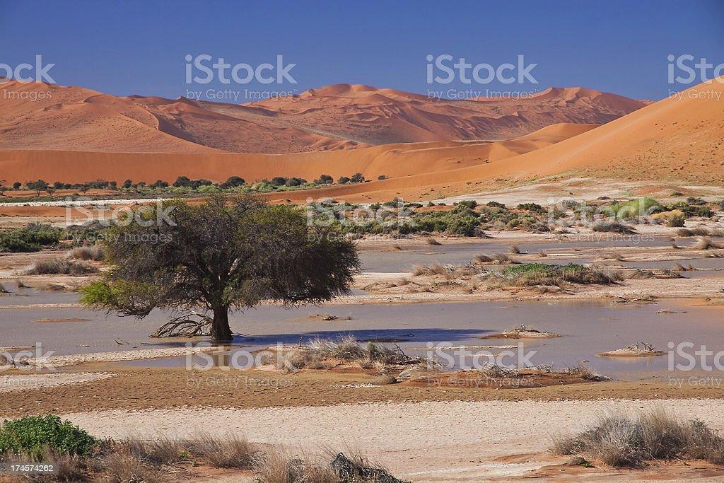 Dunes in Sossuvlei stock photo