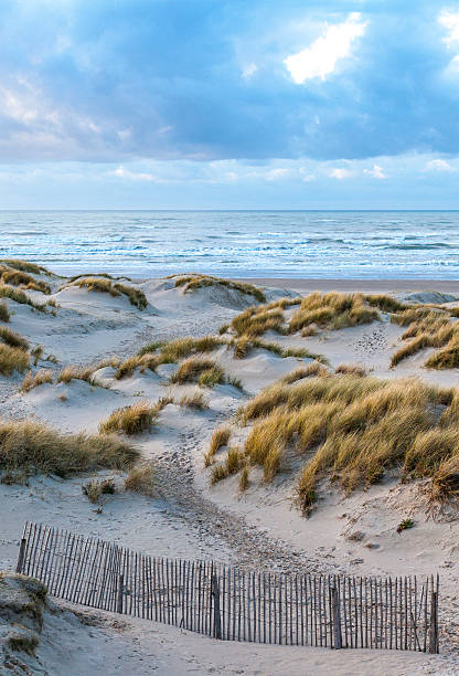 Dunes near Le Touquet Dunes landscape near Le Touquet, Nord Pas de Calais, France. somme stock pictures, royalty-free photos & images
