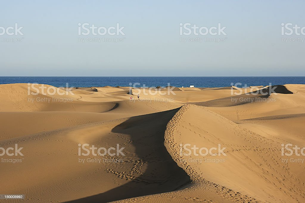 Dunes of  Maspalomas stock photo