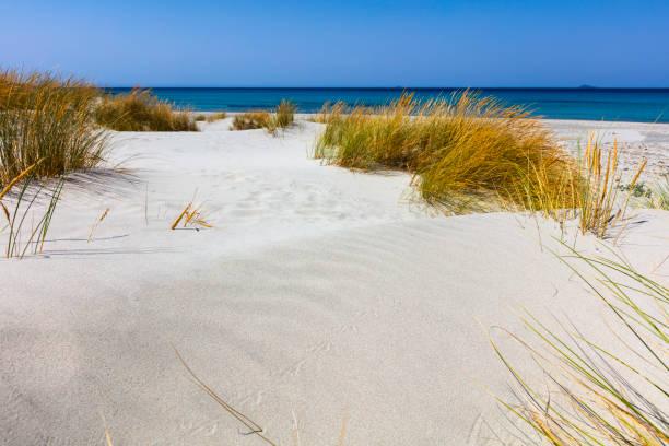 Dunes of Porto Pino beach stock photo