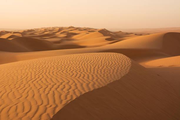 Dünen der Wahiba Sand Wüste im Morgengrauen (Oman) – Foto
