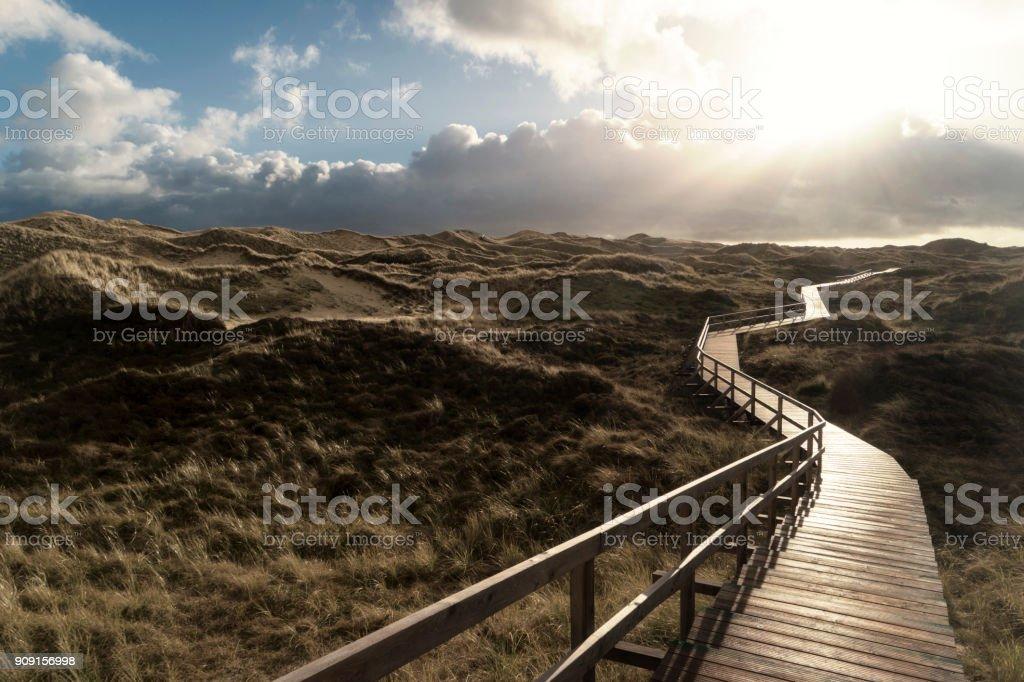 Dünen auf der Nord-friesischen Insel Amrum in Deutschland – Foto