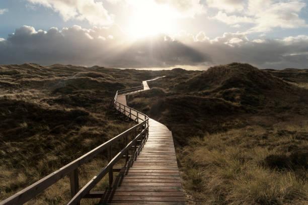 dünen auf der nord-friesischen insel amrum in deutschland - sylt urlaub stock-fotos und bilder