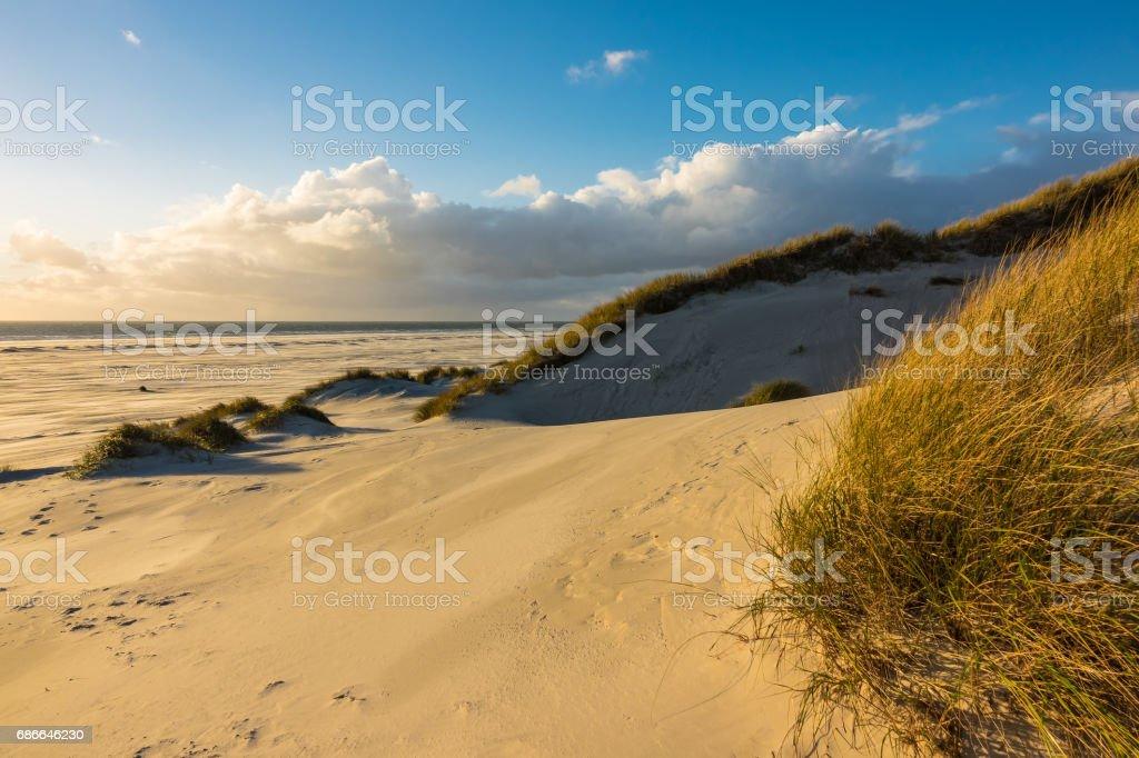 Dunes on the North Sea coast on the island Amrum, Germany royalty-free stock photo