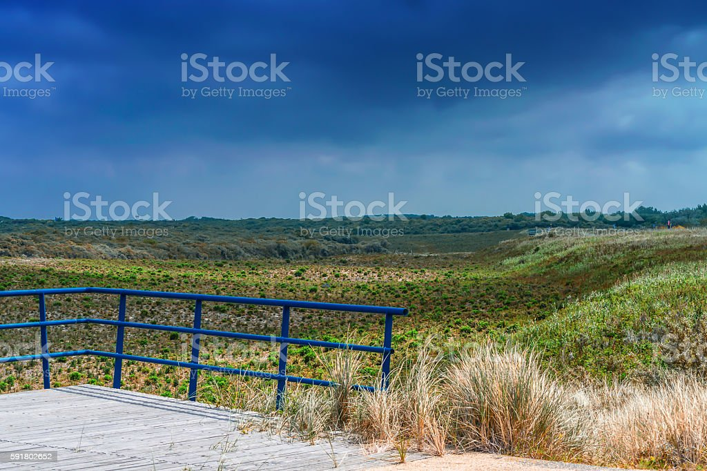 Dunes Panorama on the North Sea coast in Holland stock photo