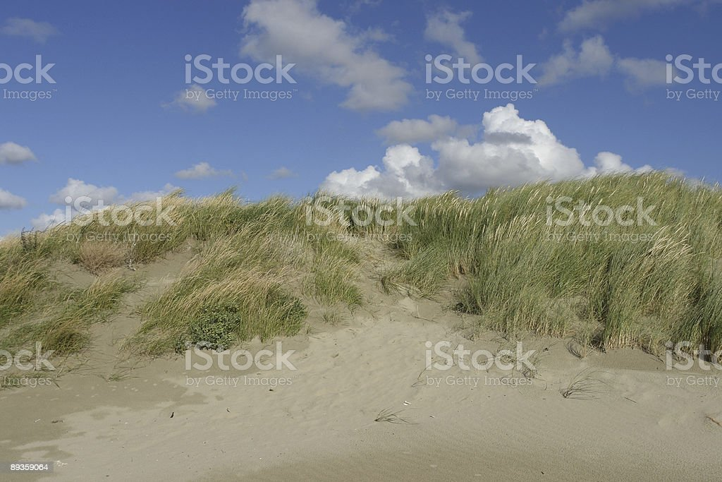 Dunes royalty free stockfoto