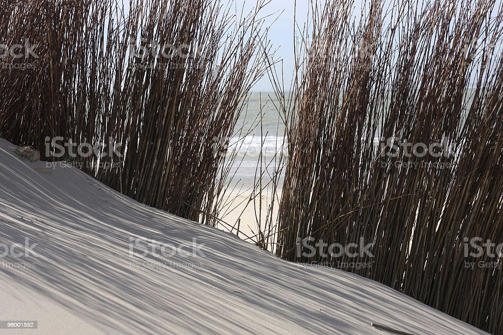 Dunes royalty-free stock photo