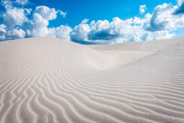 모래 언덕, 포르토 피노, 이탈리아, 사르디 니 아 - 사구 지형 뉴스 사진 이미지