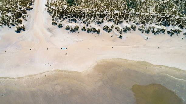 Dunes with green grass at Northern Sea Beach from above with drone stock photo