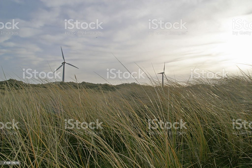 Dunes with windmills royalty-free stock photo