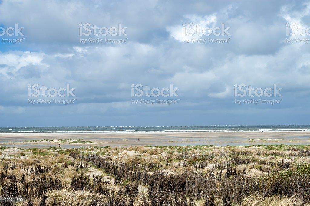 Dunescape Borkum Island, Deutschland – Foto