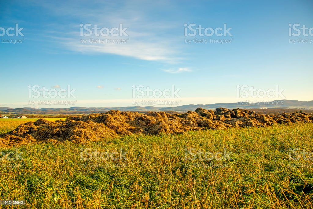 dung hill on a meadow with the German highlands Alb stock photo