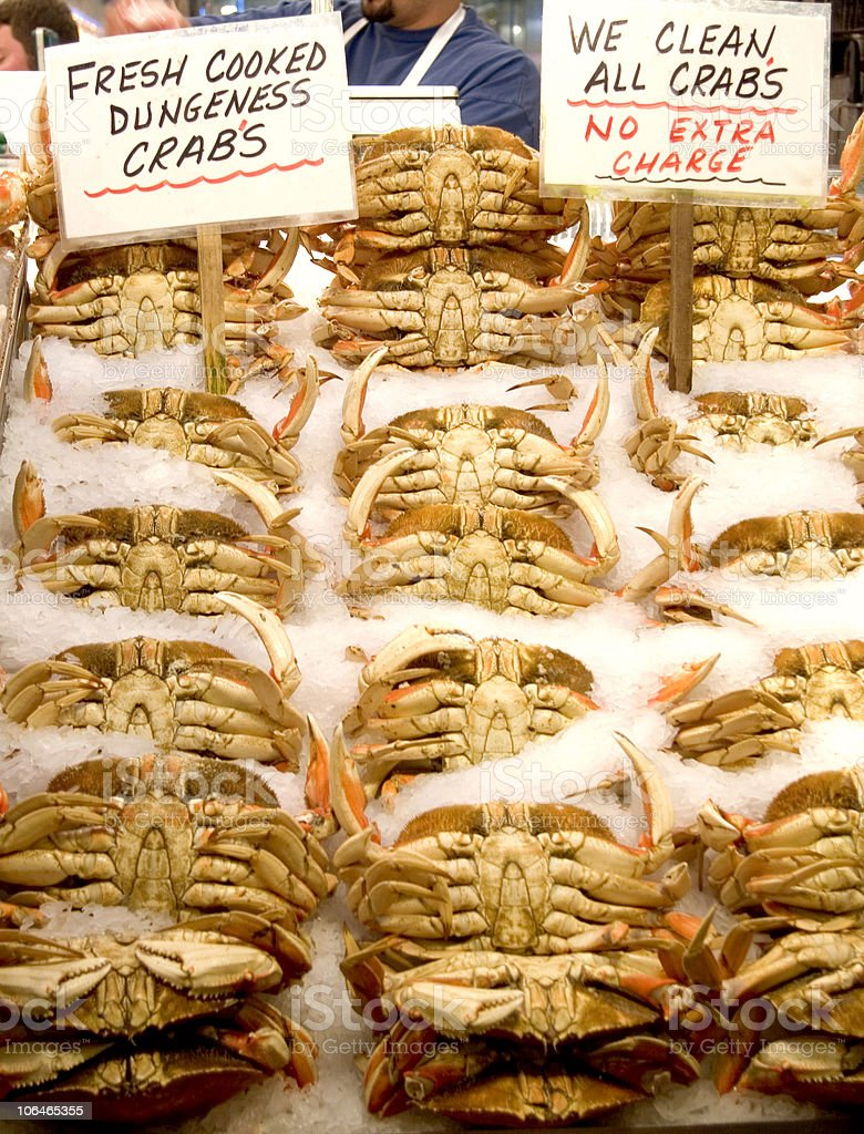 Dungeness Crabs royalty-free stock photo