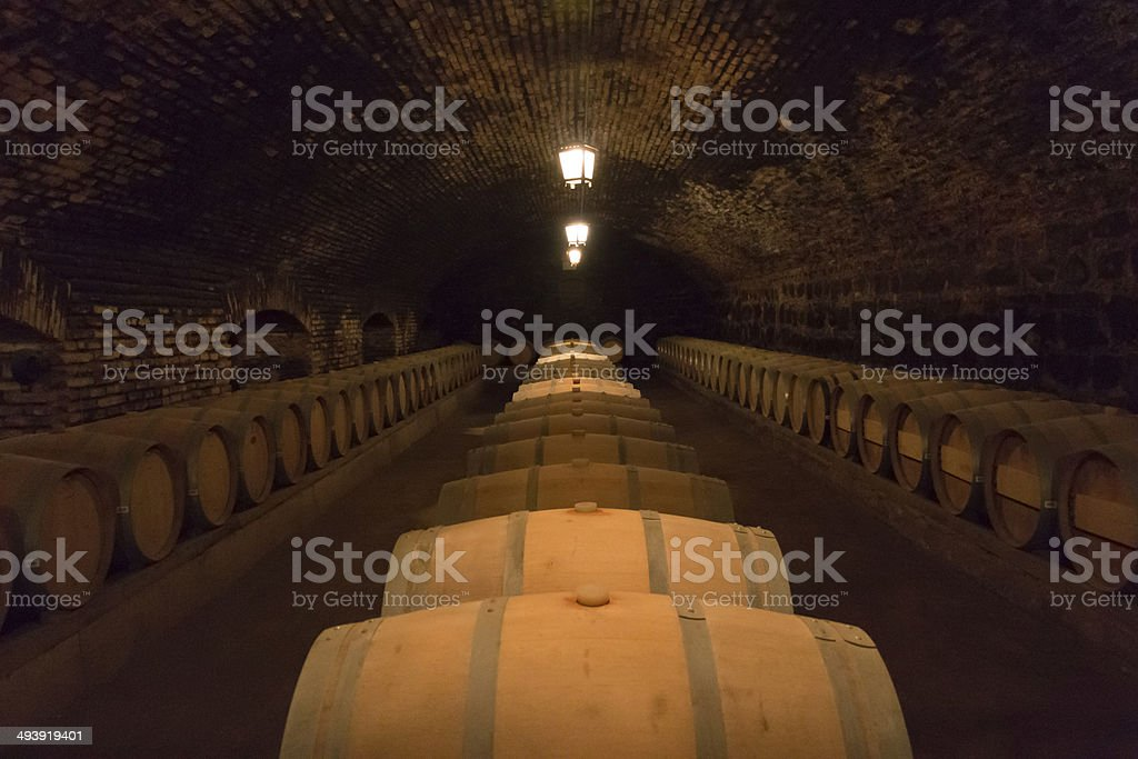 Dungeons (Wine Cellar in Santiago, Chile) stock photo