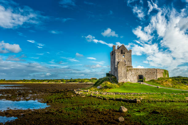 Dunguaire Castle in Irland – Foto