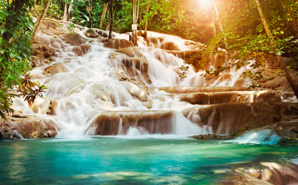 dunn's river falls in jamaica - jamaica stock photos and pictures