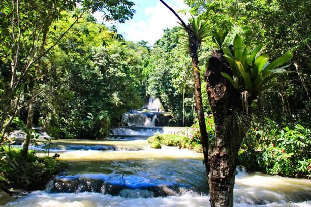 Dunn's river falls, Jamaica stock photo