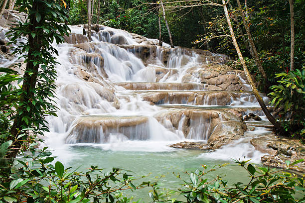 dunn's river falls - jamaica stock photos and pictures