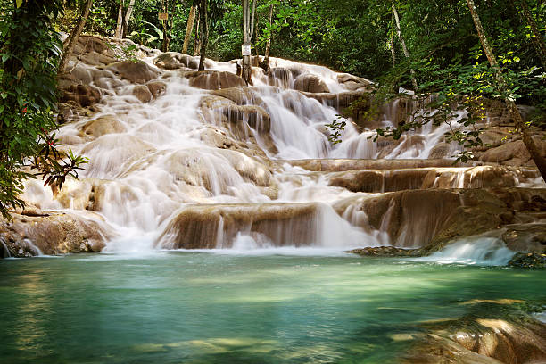 dunns river falls - jamaica stock photos and pictures