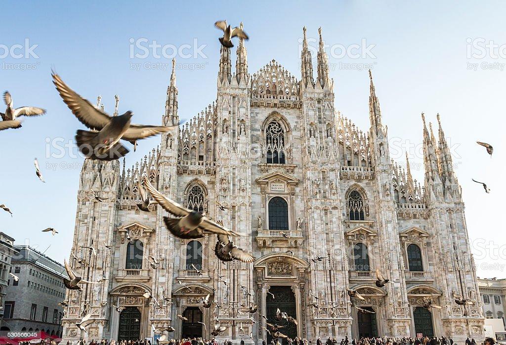 Dôme de Milan et les pigeons - Photo