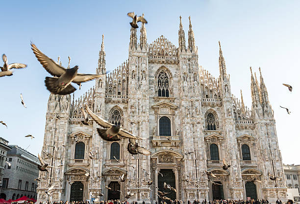 duomo of milan and pigeons - katedral bildbanksfoton och bilder