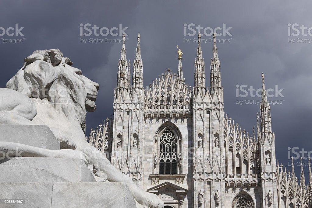 Duomo of Milan View of Cathedral of Duomo in Milan, Italy. Animal Stock Photo