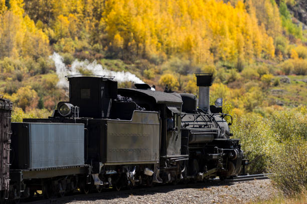 Durango Colorado Steam Locomotive Yellow Trees San Juan Mountains The Durango & Silverton Narrow Gauge Railroad (D&SNG) travels between Durango, Colorado and Silverton, Colorado with its vintage steam locomotives. This is in the San Juan Mountains and near the Animas River. These great excursion passenger trains are enjoyed by a large number of people each day, with most starting from the Durango Depot. Photo edited to remove names and numbers. san juan mountains stock pictures, royalty-free photos & images