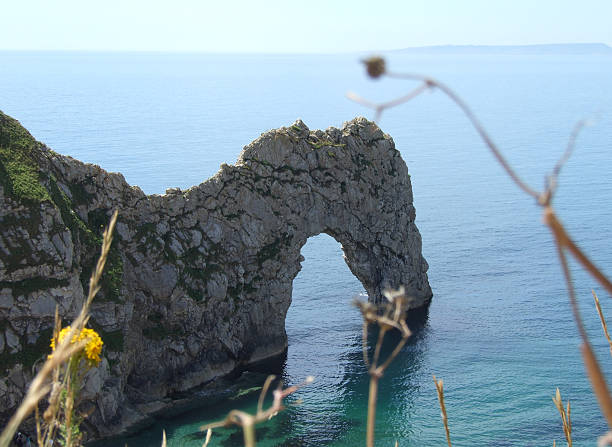 durdle door limestone arch - belkindesign stock pictures, royalty-free photos & images