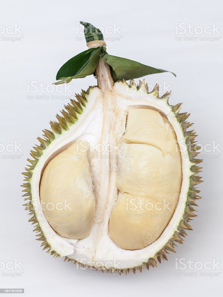 Durian Flesh stock photo