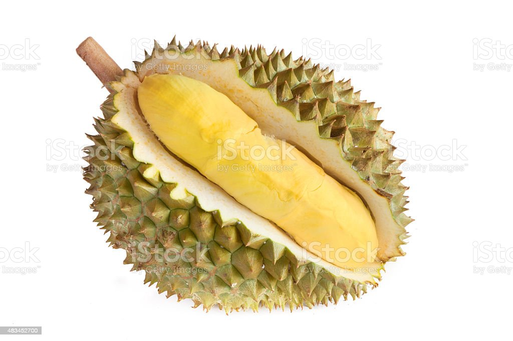 Durian fruit isolated stock photo