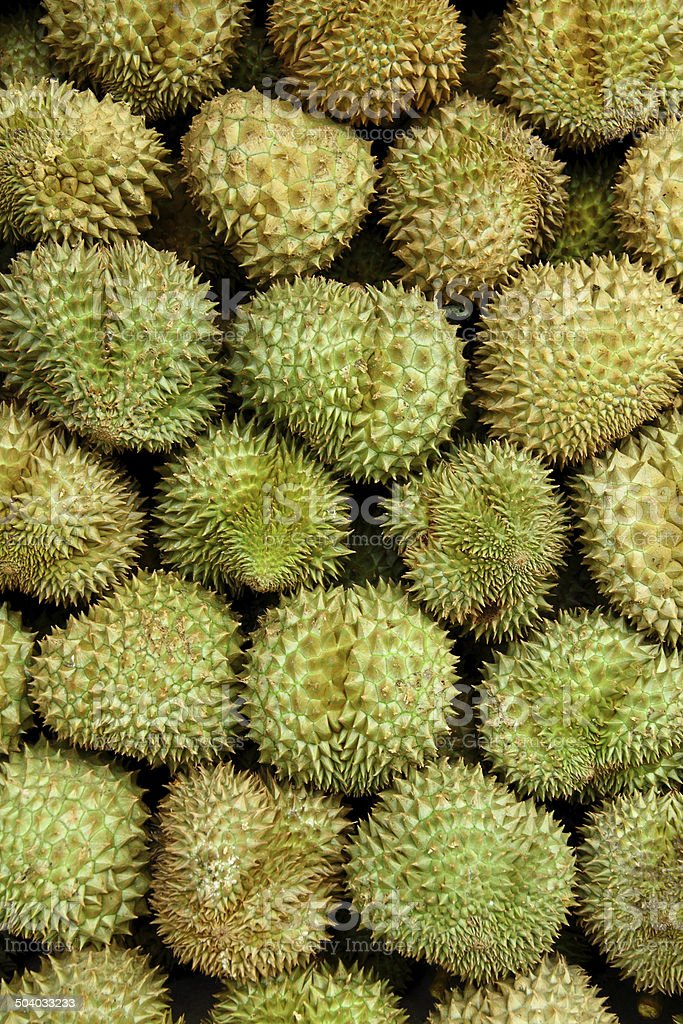 Durian fruit. stock photo