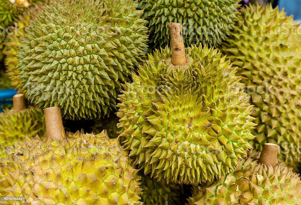 Durian fruits frais  photo libre de droits