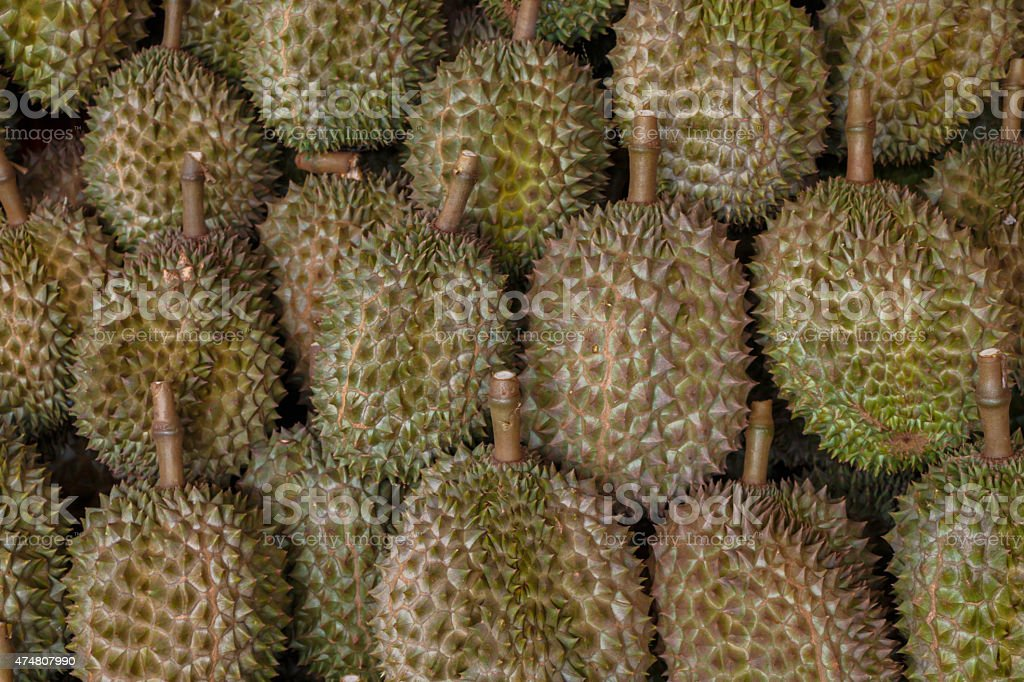 Durian in thailand stock photo