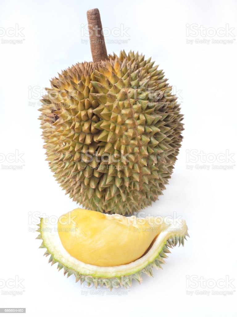 Durian isolated royalty-free stock photo