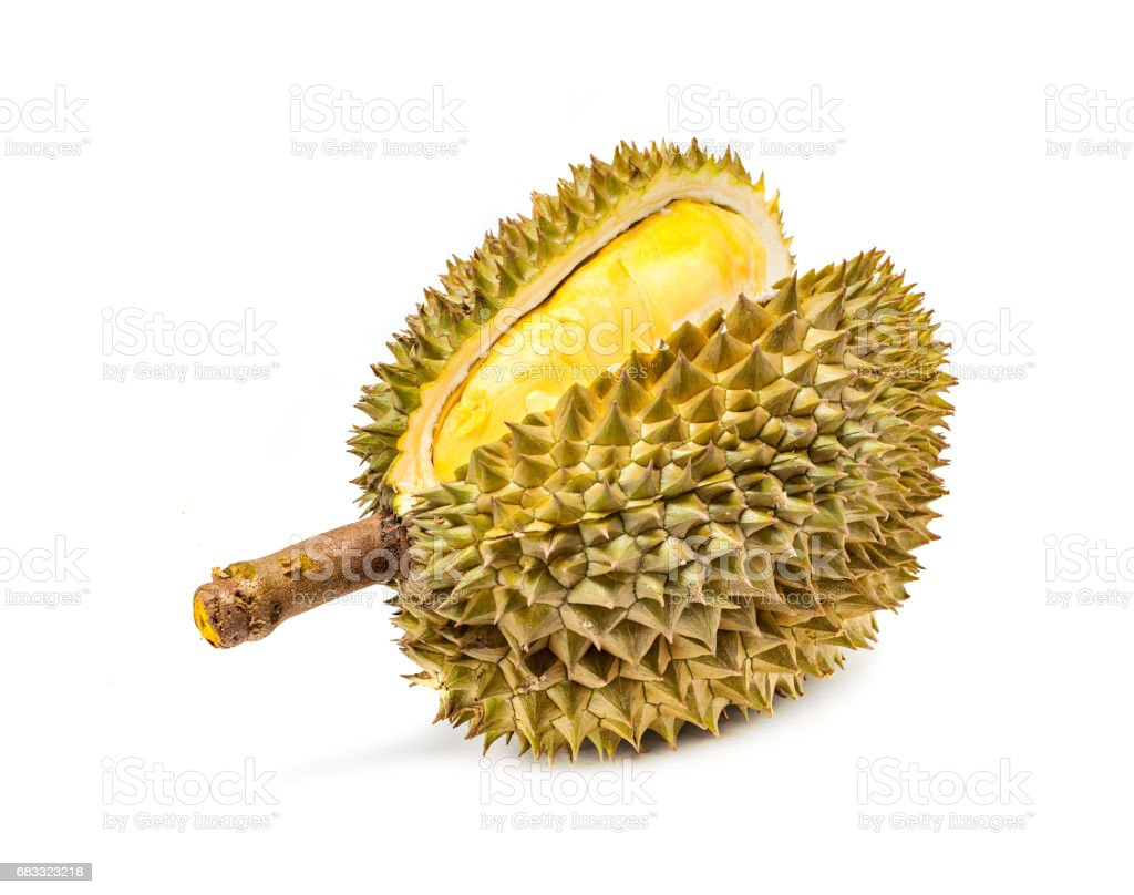 Durian Mon Thong the most popular thai fruit isolated in white background foto stock royalty-free