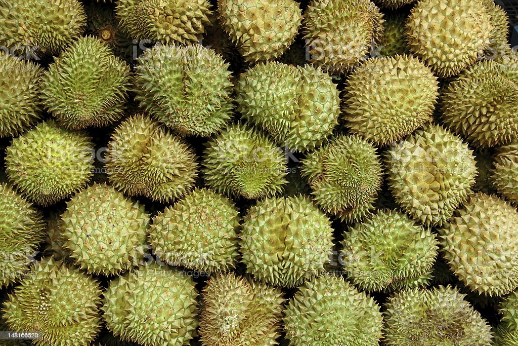 Durian of Thailand stock photo