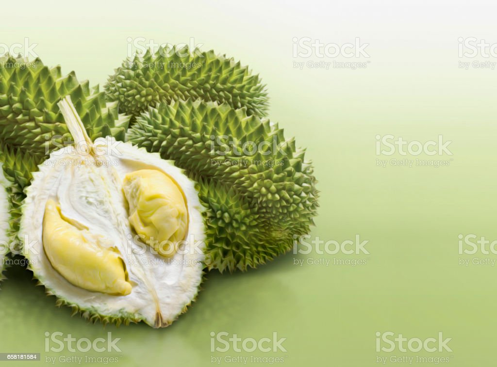 Durian on green solid background stock photo