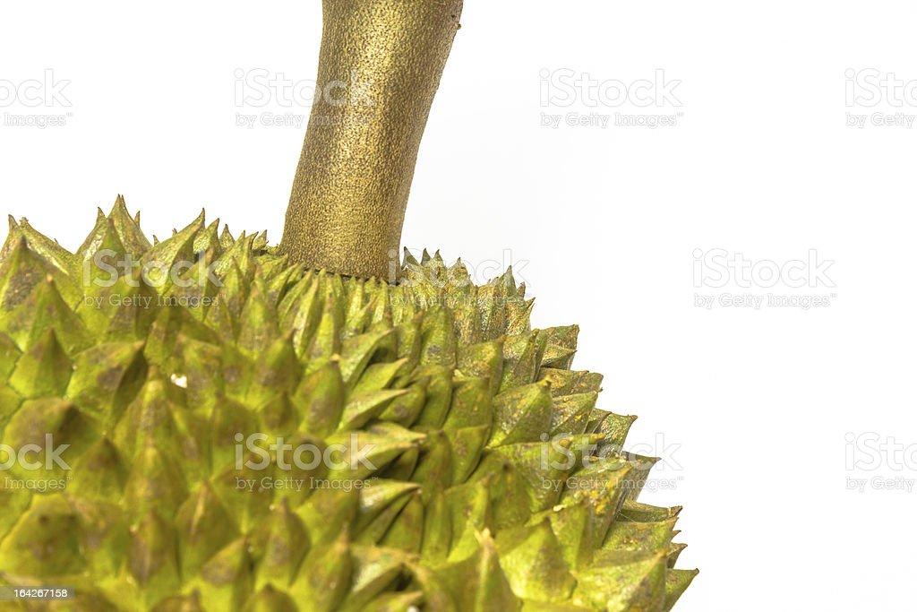 durian on white royalty-free stock photo