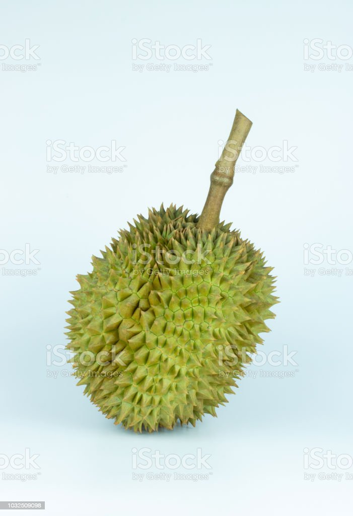 durian thailand fruit in summer festival food on white background stock photo