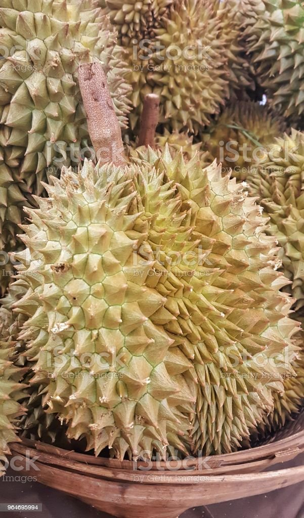 Durian the king of fruits and popular royalty-free stock photo