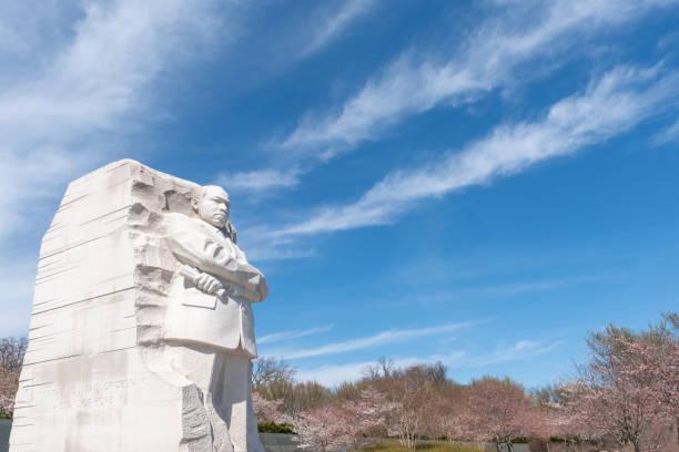 durante el festival nacional de la flor de cerezo, martin luther king jr. memorial, washington dc. e.e.u.u - martin luther king jr day fotografías e imágenes de stock