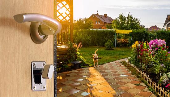 During the open door