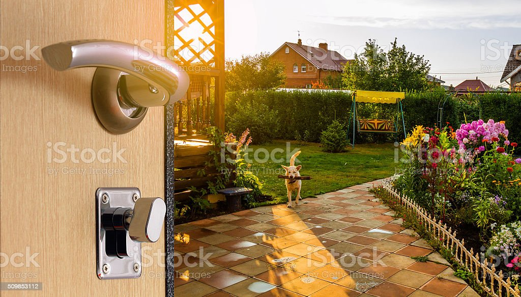 During the open door stock photo